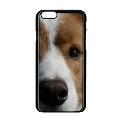 Red Border Collie Apple iPhone 6/6S Black Enamel Case