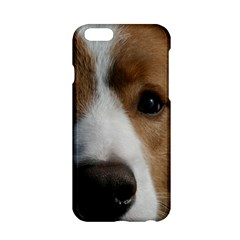 Red Border Collie Apple iPhone 6/6S Hardshell Case