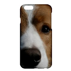 Red Border Collie Apple iPhone 6 Plus/6S Plus Hardshell Case