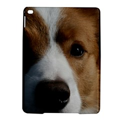 Red Border Collie iPad Air 2 Hardshell Cases