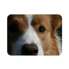 Red Border Collie Double Sided Flano Blanket (Mini)