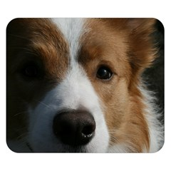 Red Border Collie Double Sided Flano Blanket (Small)