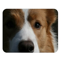 Red Border Collie Double Sided Flano Blanket (Large)