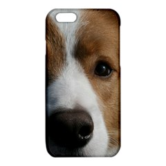 Red Border Collie iPhone 6/6S TPU Case