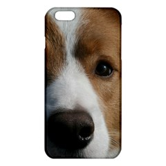 Red Border Collie iPhone 6 Plus/6S Plus TPU Case