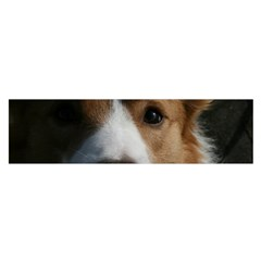 Red Border Collie Satin Scarf (Oblong)