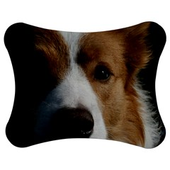 Red Border Collie Jigsaw Puzzle Photo Stand (Bow)