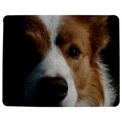 Red Border Collie Jigsaw Puzzle Photo Stand (Rectangular)