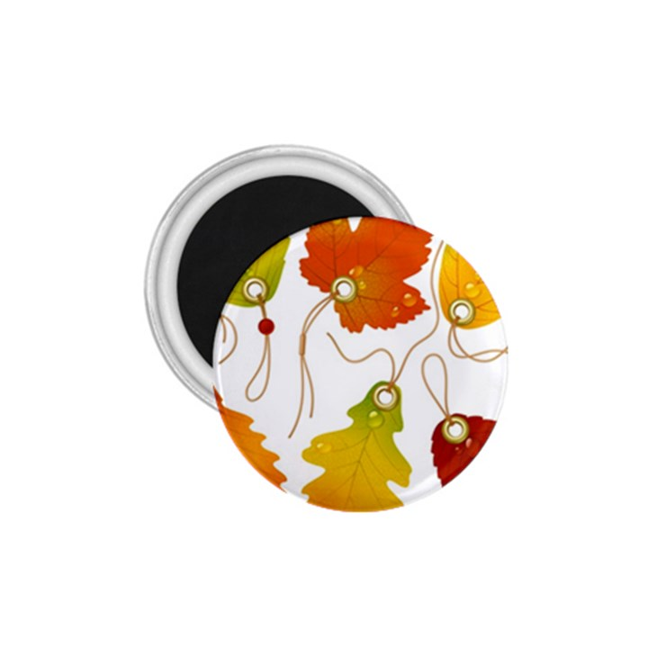 Vector Beautiful Maple Leaf 1.75  Magnets