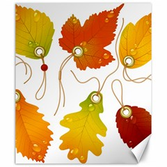 Vector Beautiful Maple Leaf Canvas 20  x 24