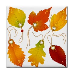 Vector Beautiful Maple Leaf Face Towel