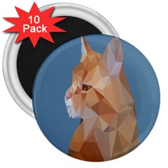 Animals Face Cat 3  Magnets (10 Pack)