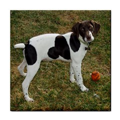 German Short Haired Pointer Puppy Tile Coasters