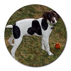 German Short Haired Pointer Puppy Round Mousepads