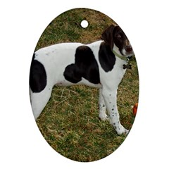 German Short Haired Pointer Puppy Ornament (Oval)