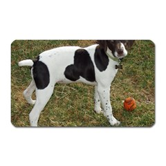 German Short Haired Pointer Puppy Magnet (Rectangular)