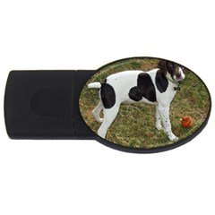 German Short Haired Pointer Puppy USB Flash Drive Oval (1 GB)