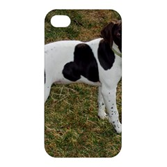 German Short Haired Pointer Puppy Apple iPhone 4/4S Hardshell Case