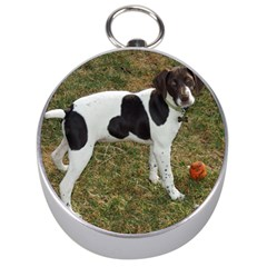German Short Haired Pointer Puppy Silver Compasses