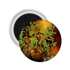 Backdrop Background Tree Abstract 2.25  Magnets