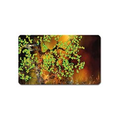 Backdrop Background Tree Abstract Magnet (name Card)