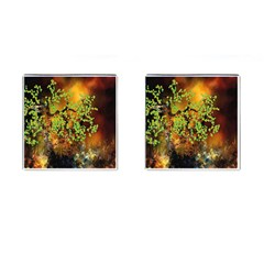 Backdrop Background Tree Abstract Cufflinks (square)