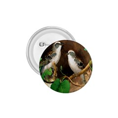 Backdrop Colorful Bird Decoration 1 75  Buttons
