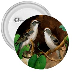 Backdrop Colorful Bird Decoration 3  Buttons