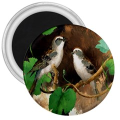 Backdrop Colorful Bird Decoration 3  Magnets