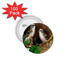 Backdrop Colorful Bird Decoration 1.75  Buttons (100 pack)