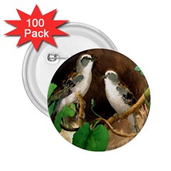Backdrop Colorful Bird Decoration 2.25  Buttons (100 pack)