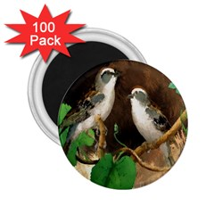 Backdrop Colorful Bird Decoration 2.25  Magnets (100 pack)