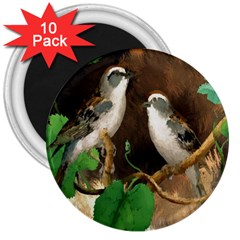 Backdrop Colorful Bird Decoration 3  Magnets (10 pack)