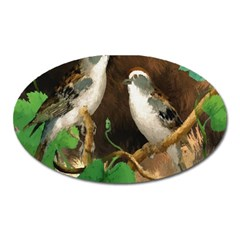Backdrop Colorful Bird Decoration Oval Magnet