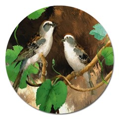 Backdrop Colorful Bird Decoration Magnet 5  (Round)