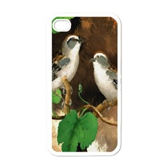 Backdrop Colorful Bird Decoration Apple iPhone 4 Case (White)
