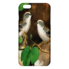 Backdrop Colorful Bird Decoration Iphone 6 Plus/6s Plus Tpu Case