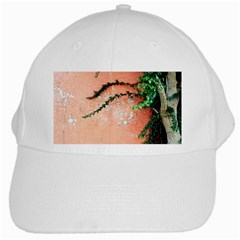 Background Stone Wall Pink Tree White Cap