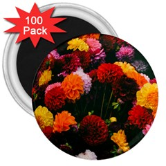 Beautifull Flowers 3  Magnets (100 pack)