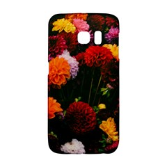 Beautifull Flowers Galaxy S6 Edge