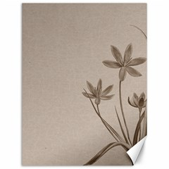 Background Vintage Drawing Sepia Canvas 12  x 16