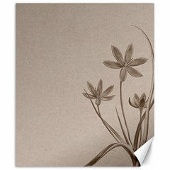 Background Vintage Drawing Sepia Canvas 20  x 24