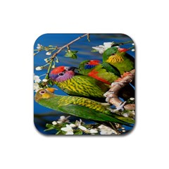 Beautifull Parrots Bird Rubber Square Coaster (4 pack)