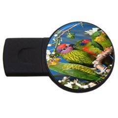 Beautifull Parrots Bird USB Flash Drive Round (1 GB)