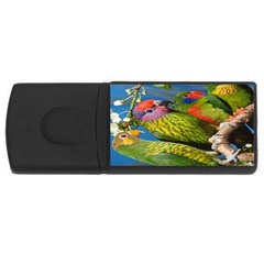 Beautifull Parrots Bird USB Flash Drive Rectangular (2 GB)