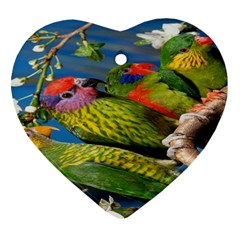 Beautifull Parrots Bird Heart Ornament (Two Sides)