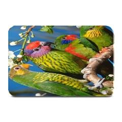 Beautifull Parrots Bird Plate Mats