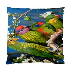Beautifull Parrots Bird Standard Cushion Case (Two Sides)