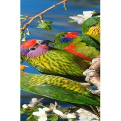 Beautifull Parrots Bird 5 5  X 8 5  Notebooks