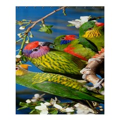 Beautifull Parrots Bird Shower Curtain 60  X 72  (medium)